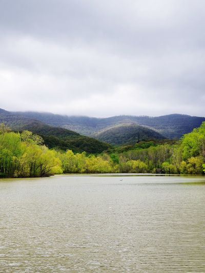 Alone time! Lake Tree Cloud - Sky First Eyeem Photo EyeEmNewHere