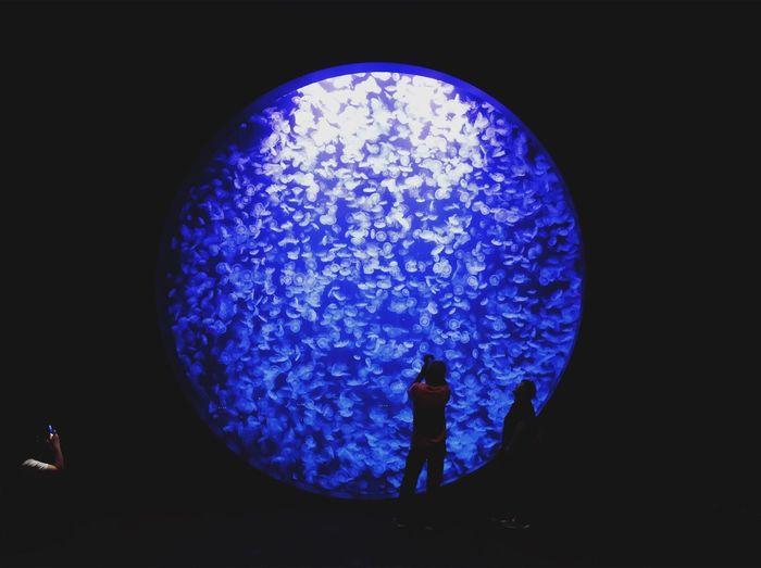 Close-up of illuminated light against blue sky
