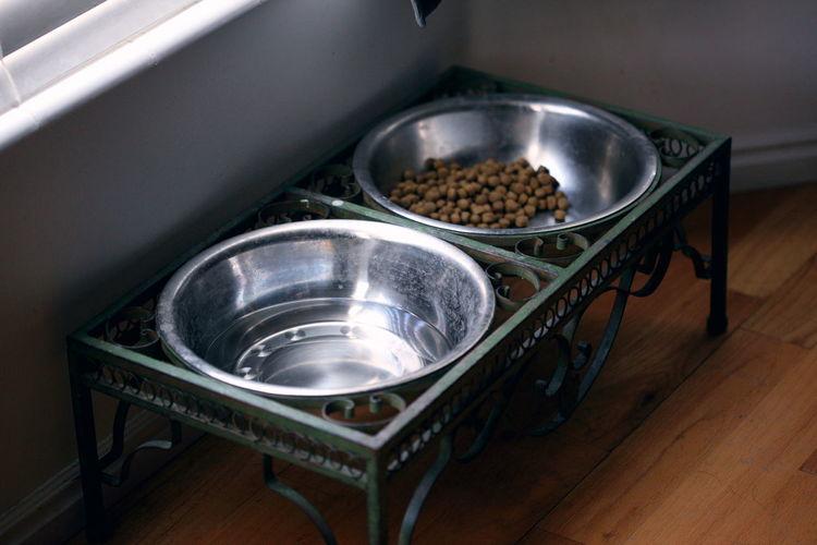High Angle View Of Pet Food In Metal Bowls On Hardwood Floor