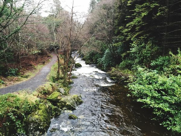 Check This Out Taking Photos Enjoying Life Water Nature Trees Tollymore Forest Park game of thrones Lookatthis