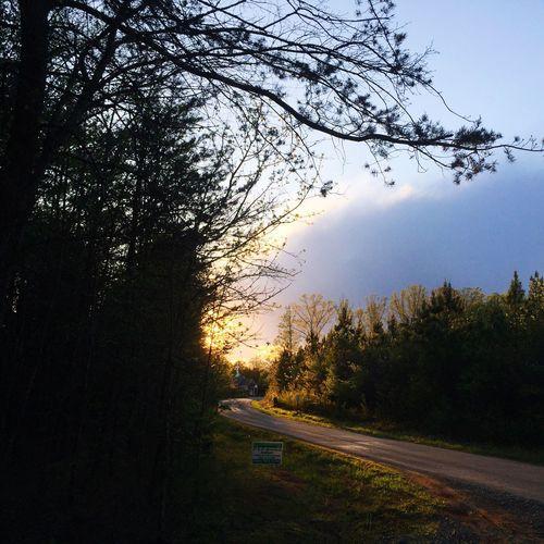 Waiting for school bus! Sunrise Morning Light