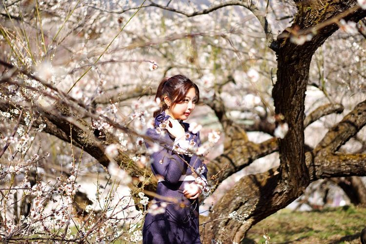 Woman Who Inspire You Japanese  Model WomaninBusiness Woman At Work Woman Face Woman Power Portrait Of A Woman PortraitPhotography Japanese Style Japanese Culture Plum Blossom in Gunma , Japan モデルその3