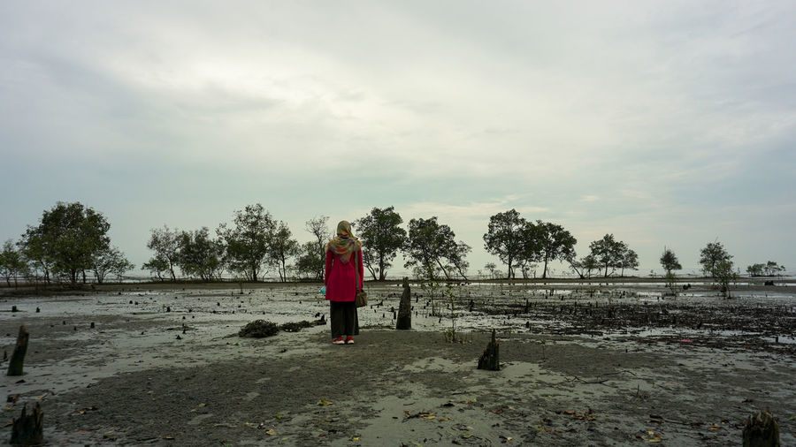 Rear view of woman standing by trees against sky