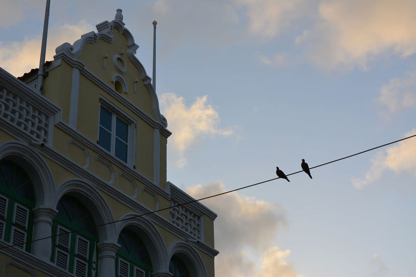 Two birds on a wire in the old district of Willemstad, Curacao. Architecture Colonial Style Horizontal Romantic Silhouette Birds Silhouette Clouds And Sky Curacao Old Buildings Poetry Soft Colors  Sunset Sky Willemstad
