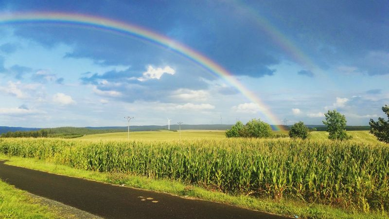 Nor ever yet the melting rainbow's vernal-tinctur'd hues to me have shone so pleasing... (Mark Akenside) Cycletour Rainbow Double Rainbow Outdoors Thuringen Thuringia Summer Sommer Nature Imagination