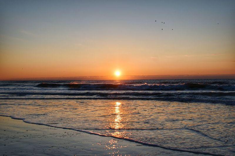 Horizon Over Water Sunset Sea Beach Water Tranquility Sky Sun Tranquil Scene Beauty In Nature Bird Scenics Travel Destinations Nature Reflection Sunrise Wilmington NC EyeEmNewHere The Great Outdoors - 2017 EyeEm Awards Sommergefühle The Traveler - 2018 EyeEm Awards