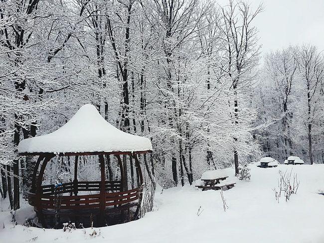 Snow ❄ Kampus  Arkabahce Kış Snow Day Snow❄⛄ Wintertime Cold Winter ❄⛄ Yaşamdankareler Eye4photography