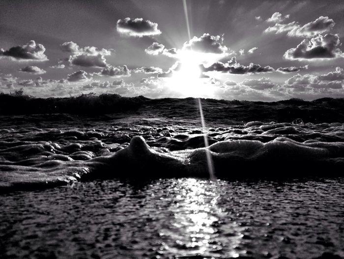 Shorescape.