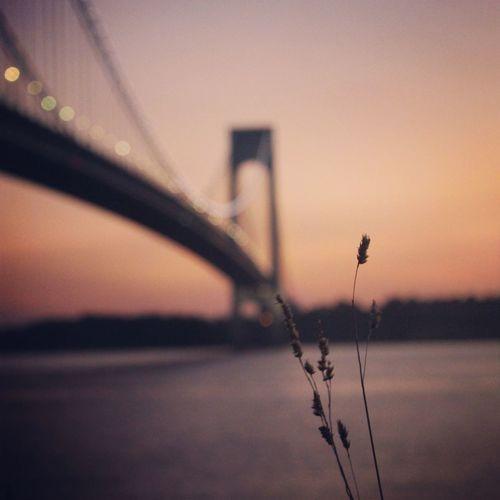 """From Brooklyn to Shaolin"" Relaxing Brooklyn Verrazano Bridge NYC"