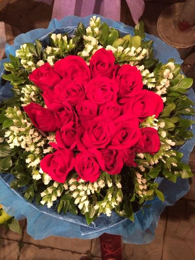 Roses Flowers Beautiful Hanoi My Shop