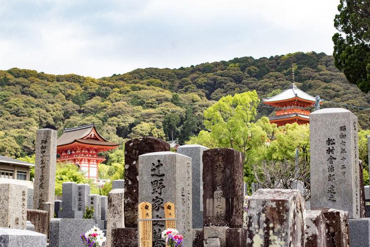 Calm Graveyard