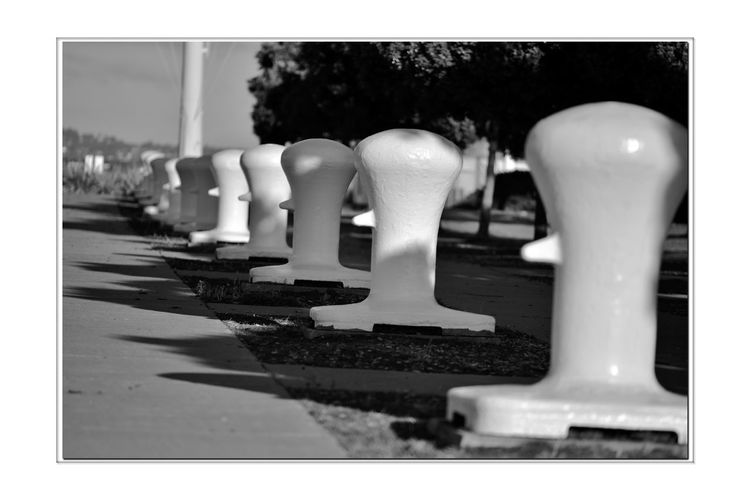 Middle Harbor Shoreline Park 8 Port Of Oakland, Ca Middle Harbor Entrance Shoreline Park Mooring Posts Row Of Posts Diminishing Perspective Shadows Botto. Of Flagpole Monochrome_Photography Monochrome Black & White Black & White Photography Black And White Black And White Collection  Sidewalk Trees Maritime Dock Hardware Shipping Industry Close-up