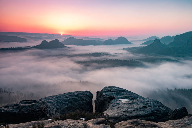 Misty morning on cliff in saxon switzerland national park. artistic style post processed photo