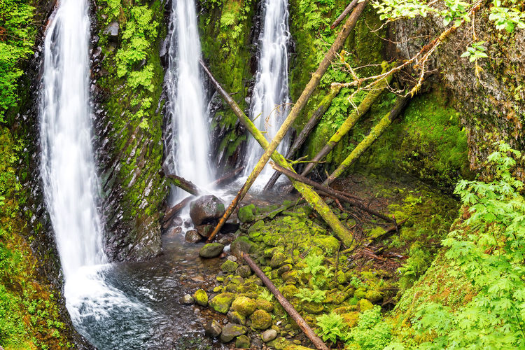 View of Triple Falls in the Columbia River Gorge in Oregon Creek Environment Falls Forest Gorge Green Landscape Multnomah Multnomah Falls  Natural Nature Oneonta Oneonta Falls Oregon Outdoors Pacific Northwest  Portland Portland, OR Scenery Scenic Stone Stream Tree Trees Waterfall