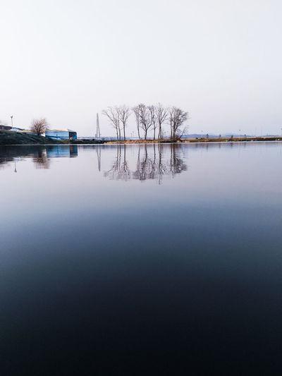 Water Tree Lake
