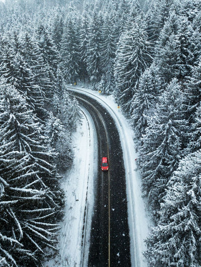 Transportation Cold Temperature Winter Snow Road Tree Motion Mode Of Transportation No People Plant Nature Beauty In Nature on the move Forest Snowing Car Motor Vehicle Outdoors Connection Track Pine Tree Coniferous Tree Red Car Road Aerial View My Best Photo