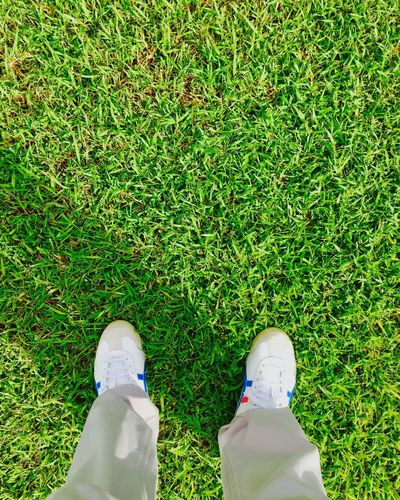 Close-up Day Field Grass Green Color Growth High Angle View Human Body Part Human Leg Low Section Men Nature One Person Outdoors Real People Shoe Standing