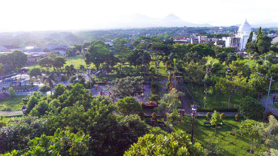 Merjosari city park, Malang. Building Exterior Architecture Built Structure Building City Plant Tree Nature Residential District High Angle View Cityscape Day House No People Environment Landscape Outdoors Town Growth Sky TOWNSCAPE Park City Life City Park