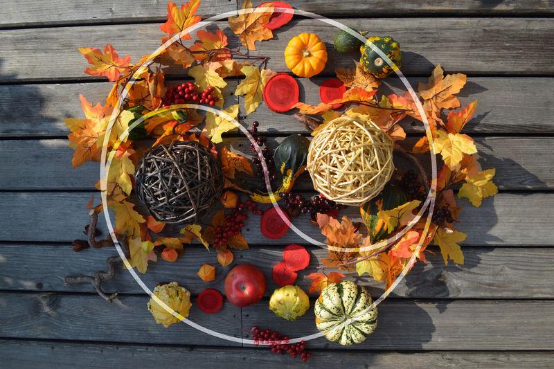 Erntezeit Herbst Früchte Natur Apfel Autumn Erntezeit Feng Shui Herbst Nature Obst & Gemüse Sähen Und Ernten Yin Und Yang Ernte Früchte Helloween Holding Kürbis Natur Obst Trauben Wachstum
