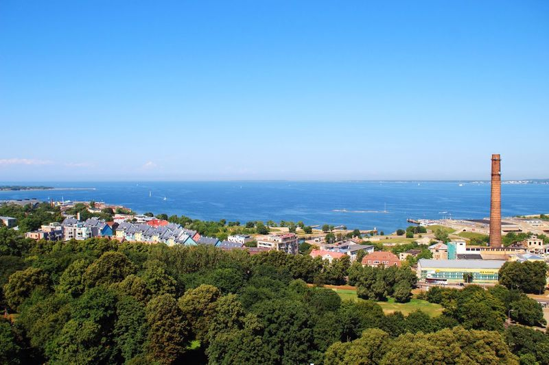 High angle view of trees by sea against clear sky