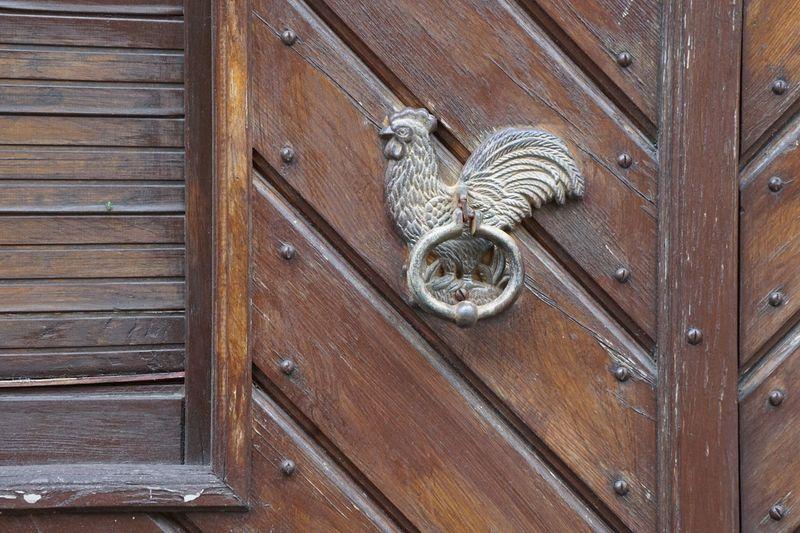 Wood - Material Animal Animal Themes No People Pattern Mammal Day