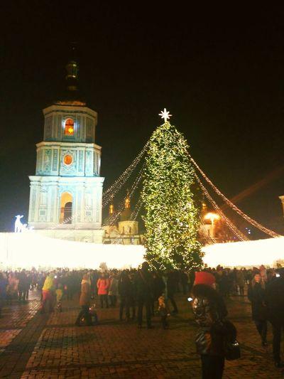 Christmas Christmas Tree Christmas Decoration Illuminated Night Christmas Lights Celebration