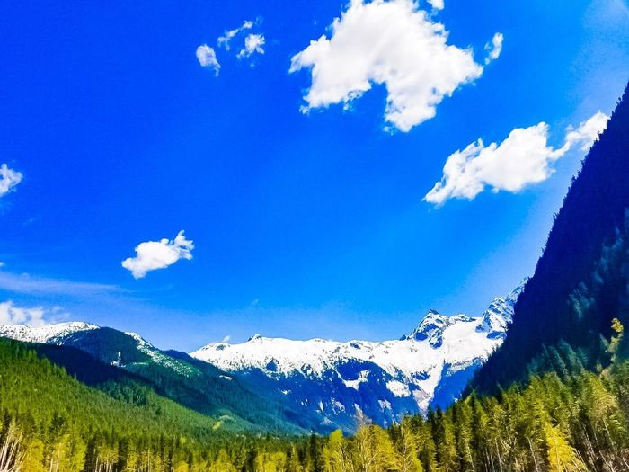 Mountain Beauty In Nature Blue Nature Scenics Cloud - Sky Tranquility Sky Mountain Range Tranquil Scene Day Snow Outdoors Cold Temperature Tree Landscape Happiness British Columbia Sommergefühle