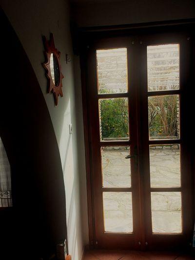 Kapısından Mandalinleri seyredebileceğimiz evlerimiz olur belki Bodrum Mandalinası