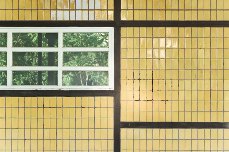 Architecture Day Minimalism No People Plants Reflection Tiles Wall Yellow Paint The Town Yellow