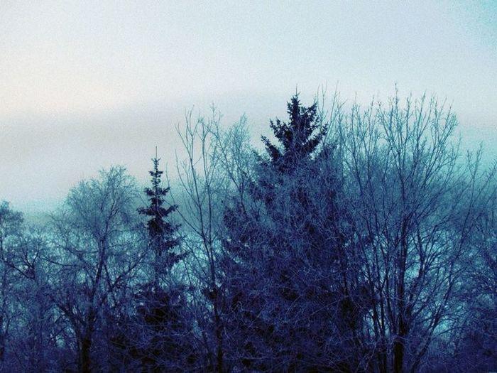 Winter at Åre, Sweden Winter
