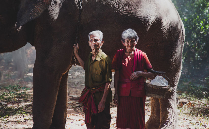 Senior couple standing by elephant in forest