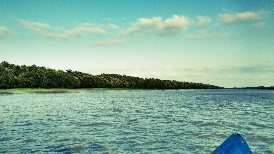 River View Tree Scenics Sky Lake Beauty In Nature Nature Water Landscape Outdoors No People Day On The Boat Again Sundarban Diaries Memories Mobile Photography Fine Art Photography