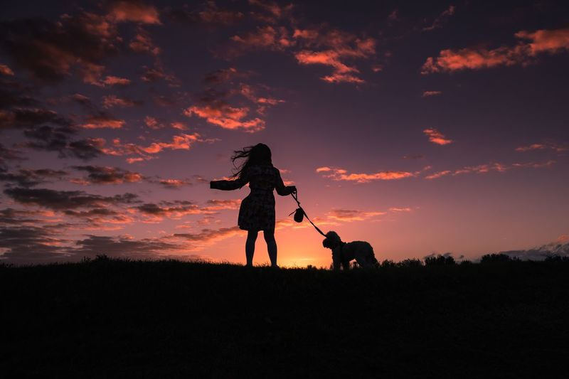 Rear View Of Girl With Dog Standing On Silhouette Field Against Sky During Sunset