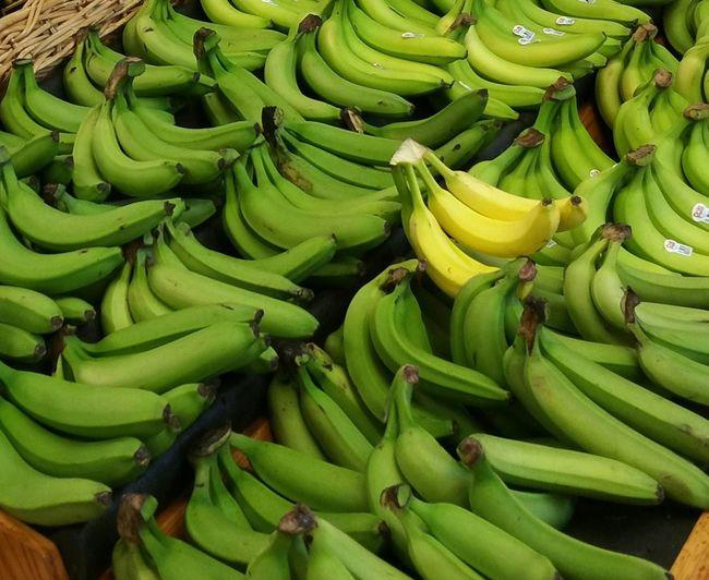 Bananas Green Green Green!  Fruit Greenbananas Produce Foodphotography Ripe Platano