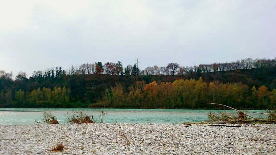 Piave Fiume Piave River Landscape Walking Around