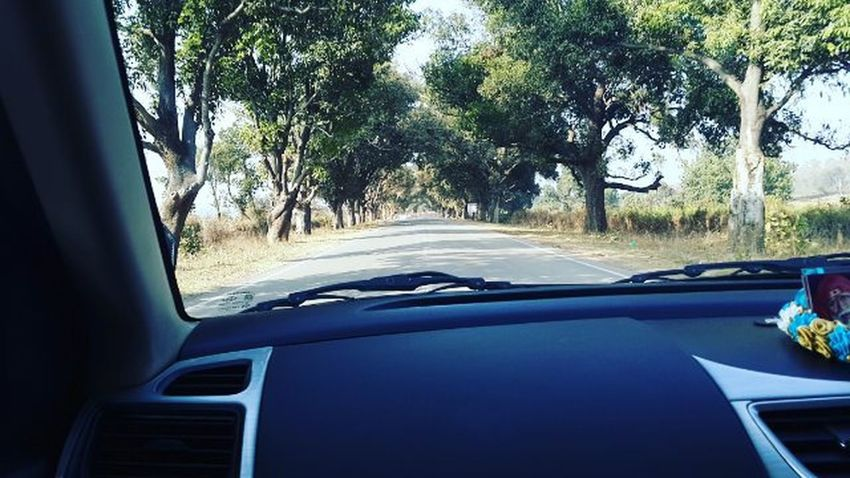 Drive!!!! Longdrive Nature DSLR Photographylovers Photographyislifee Highway Indianroads SamsungGalaxyS4 Tree Nature Filter