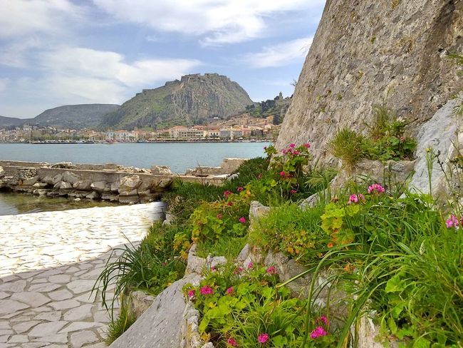 Nafplio, Greece Flower Flowers Historical Building History Idyllic Nafplion Tranquil Scene Travel Destinations Travelling