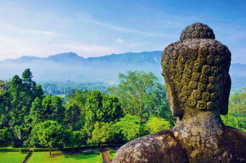 Mountain Outdoors Nature Aerial View No People Travel Journey Tourism Green Temple Borobudur Borobudur Temple Buddha Buddhism Religion Religious Architecture Java Javanese Culture INDONESIA Indonesia_photography View Culture Yogyakarta Jogyakarta Yogyakarta, Central Java - Indonesia