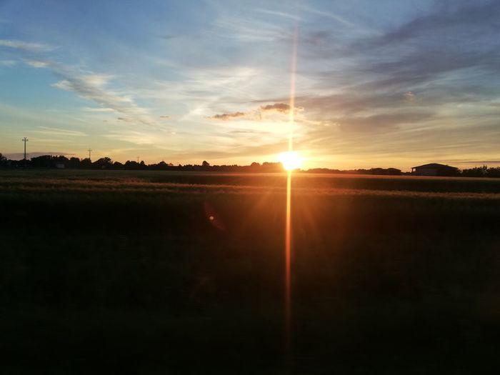 Sunset Sunlight