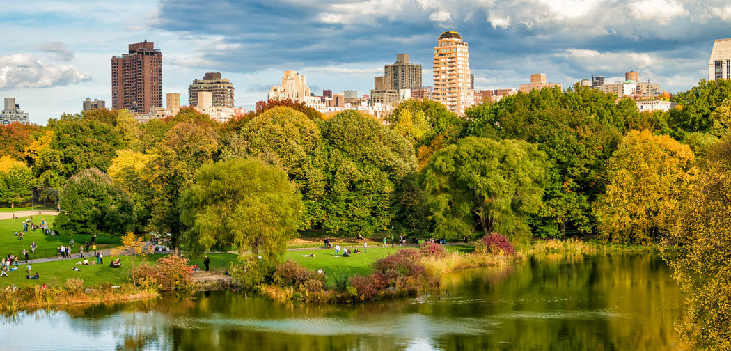 Green Top Tourism Tall Panorama Street Landscape Skyscraper Built Reflection Horizon America Day Amazing Style Scenic Water Scenics Colorful New Views Outdoor Scene Fall Leaf NY Offices Bench NYC Branch Beautiful Downtown Urban Yellow Tree