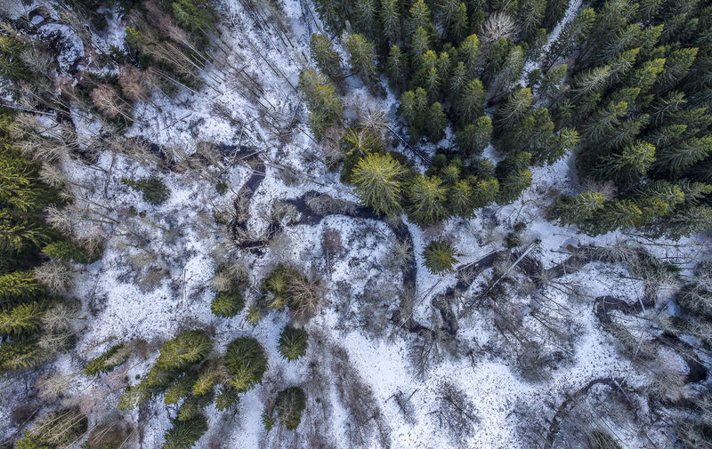 Aerial Shot Huddinge Sweden Winter Aerial View Beauty In Nature Day Dronephotography Forest Growth High Angle View Motion Nature No People Outdoors Scenics Sky Snow Stream - Flowing Water Sweden Nature Tranquil Scene Tranquility Tree Water Waterfall