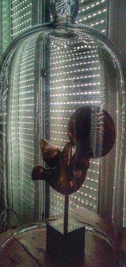 Paloma dentro de Campana de cristal Bell
