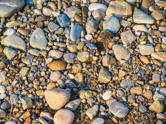 Abundance Backgrounds Beach Beauty In Nature Day Full Frame Grey High Angle View Large Group Of Objects Nature Outdoors Pebble Rock Rock - Object Shore Stone - Object Stone Material Stones Tranquility Vacations