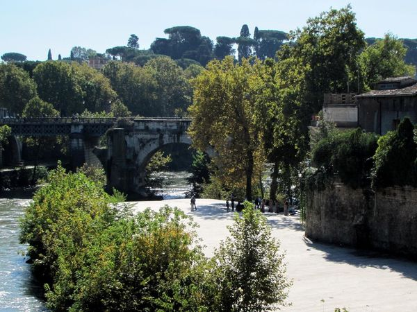 Architecture Bridge - Man Made Structure Building Exterior Built Structure Connection Day Growth Nature No People Outdoors River Tiber River Travel Destinations Tree Water Moving Around Rome