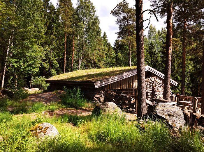 Beautiful nature, nice outdoor activities, including outdoor jacuzzi and sauna in Kannonnokka, Porvoo. EyeEmNewHere Nature