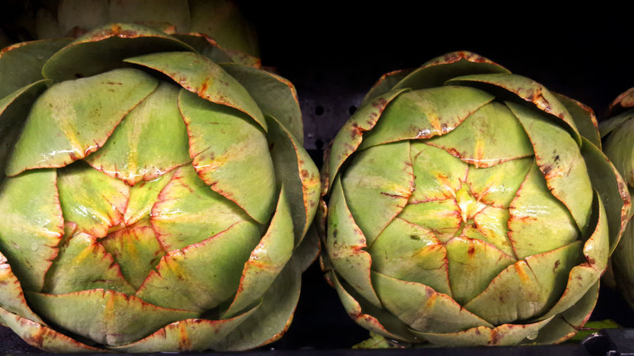 Artichokes fresh and for sale