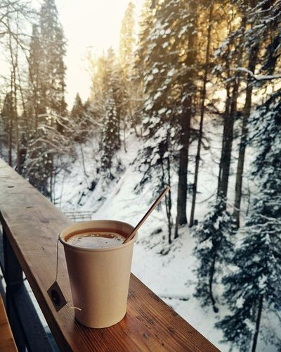 Disposable cup on table against trees during winter