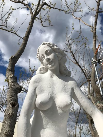 Statue Sculpture Tree Religion Spirituality Low Angle View Branch No People