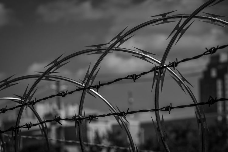 Don't tread on me. Check This Out Urban Urbanphotography Urban Exploration City City Life Blackandwhite Black And White Blackandwhite Photography Barbed Wire Razorwire Nikon Nikonphotography Eyeemphotography EyeEm Best Edits EyeEm Best Shots