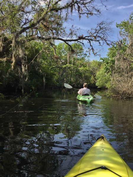 Kayaking Crane creek Crane Creek Melbourne Florida Leisure Activity Vacations One Woman Only Tranquility Nature Kayak Outdoors Weekend Activities One Person Florida Nature